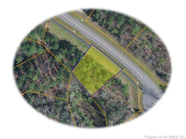 9986 Mill Pond Run, Toano, VA 23168 (#1820507) :: Abbitt Realty Co.