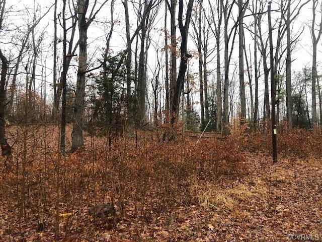 4 Old Church Road, Powhatan, VA 23139 (MLS #1822044) :: EXIT First Realty