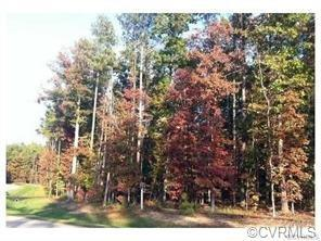 13419 River Otter Road, Chesterfield, VA 23838 (MLS #1822603) :: Explore Realty Group