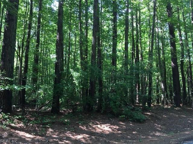 LOT 41 Wilton Creek Road, Hartfield, VA 23071 (MLS #1827984) :: Chantel Ray Real Estate