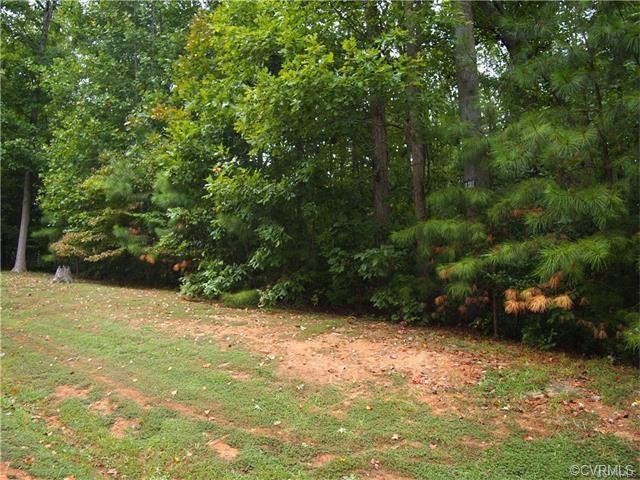 13020 Chesdin Landing Drive, Chesterfield, VA 23838 (#1830750) :: Abbitt Realty Co.