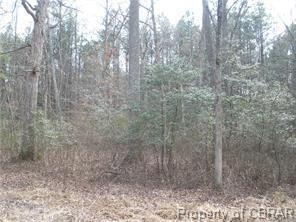 Lot 89 & 90 Cypress Trail, Gloucester, VA 23061 (#1831997) :: Abbitt Realty Co.
