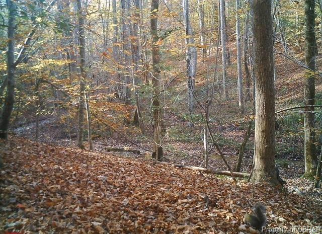 Lot 9 Deerwood Court, Gloucester, VA 23061 (#1832835) :: Green Tree Realty