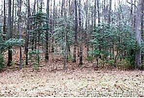 Lot 1 Deerwood Court, Gloucester, VA 23061 (MLS #1832999) :: Chantel Ray Real Estate