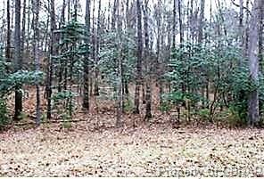 Lot 1 Deerwood Court, Gloucester, VA 23061 (#1832999) :: Green Tree Realty