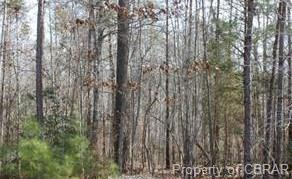 Lot 5 Deerwood Court, Gloucester, VA 23061 (MLS #1833009) :: Chantel Ray Real Estate