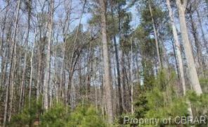 Lot 14 Deerwood Court, Gloucester, VA 23061 (#1833020) :: Green Tree Realty