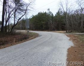 37.75 Bookers Lane, North, VA 23128 (MLS #1833033) :: Chantel Ray Real Estate
