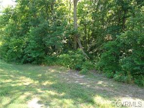 4531 Chippoke Road, Chesterfield, VA 23831 (#1833503) :: Abbitt Realty Co.