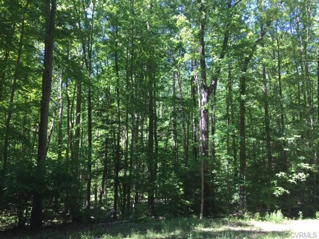 Lot 6 Avalon Woods Road, Hanover, VA 23192 (MLS #1835958) :: The RVA Group Realty