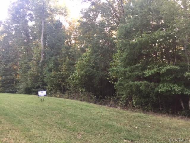 1623 Sabot Creek Drive, Goochland, VA 23103 (#1836148) :: Abbitt Realty Co.