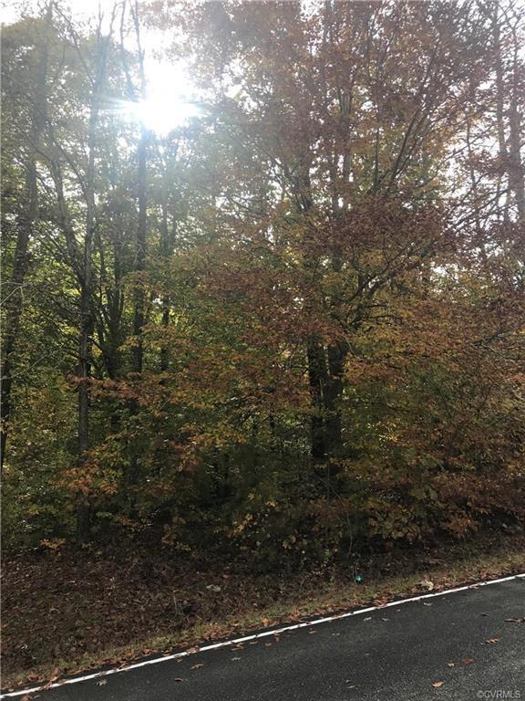 320 Lake Land'or Drive, Ruther Glen, VA 22456 (MLS #1838864) :: Explore Realty Group