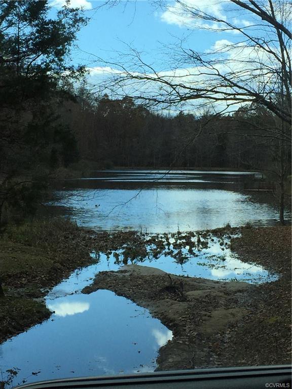 4601 Hadensville Farm Lane, Goochland, VA 23117 (MLS #1900110) :: EXIT First Realty