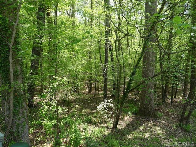 122 Whistle Walk, Williamsburg, VA 23188 (#1901588) :: 757 Realty & 804 Homes
