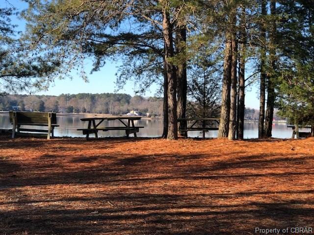 13 Scoggins Creek Trail, Hartfield, VA 23071 (#1902332) :: Abbitt Realty Co.