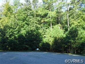 12306 Chesdin Crossing Drive, Chesterfield, VA 23838 (#1904423) :: Abbitt Realty Co.