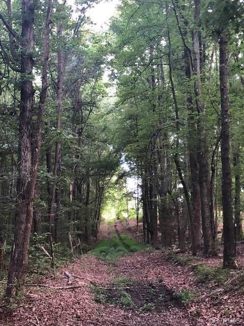 616 Deep Run Road, Cumberland, VA 23027 (#1923722) :: Abbitt Realty Co.