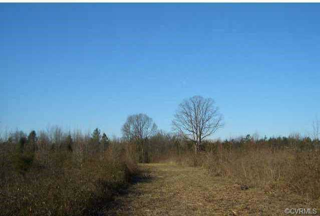 50 ACRES, Patrick Henry Highway, Amelia Courthouse, VA 23002 (#1926559) :: Abbitt Realty Co.