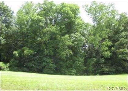 83 Portobago Trail, Port Royal, VA 22535 (MLS #1930756) :: The Redux Group