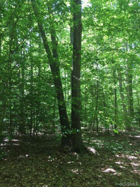 Lot 6 Avalon Woods Dr Road, Hanover, VA 23192 (MLS #1935093) :: The RVA Group Realty