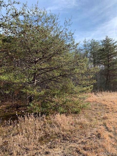 0 Constance Trail, Goochland, VA 23038 (MLS #1938379) :: Small & Associates
