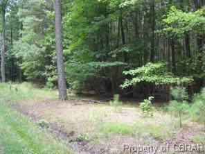 0 Long Cove Road, Kilmarnock, VA 22482 (MLS #2003021) :: The Redux Group