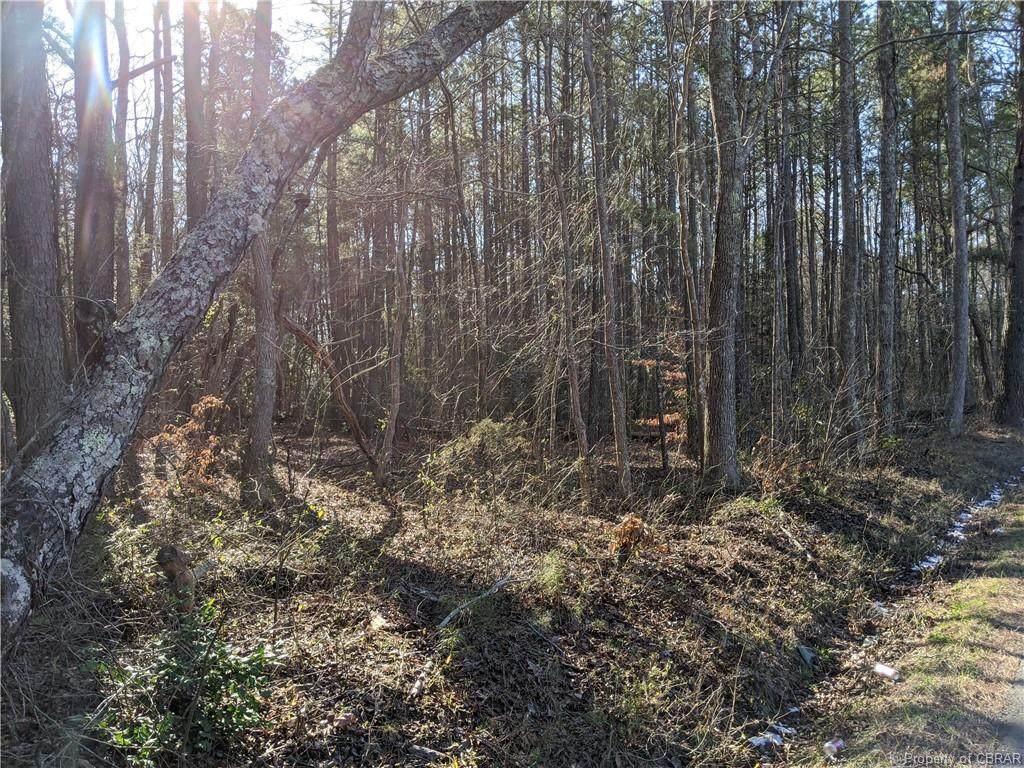 Parcel 2 Chestnut Fork Road - Photo 1