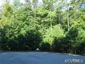 13461 Corapeake Terrace, Chesterfield, VA 23838 (MLS #2007350) :: Small & Associates