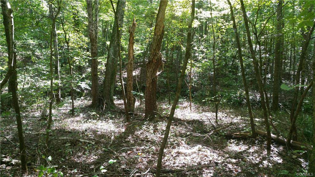 2.59 Acres Bent Creek Road - Photo 1
