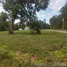 001 Holly Point Road - Photo 1