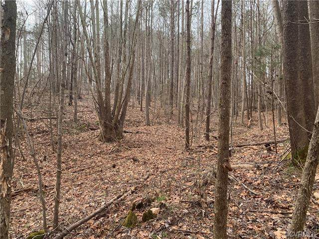0000 New Town Road, New Kent, VA 23124 (MLS #2016332) :: The RVA Group Realty
