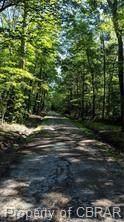 lot C Creek Lane Lane - Photo 5
