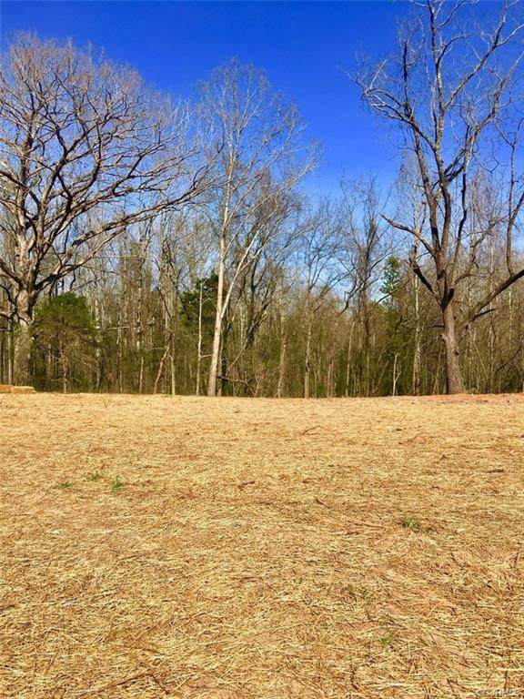 1891 Cartersville Road, Goochland, VA 23063 (MLS #2020369) :: Small & Associates