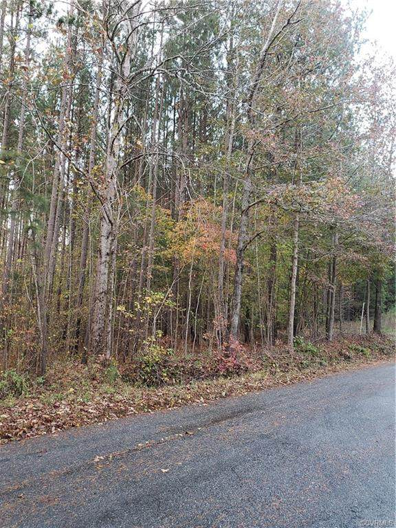 0000 Double Bridges Rd, Keysville, VA 23947 (MLS #2033264) :: Treehouse Realty VA