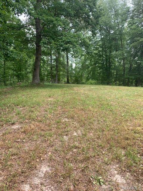 1401 Old Apple Grove Road, Mineral, VA 23117 (MLS #2033297) :: The Redux Group
