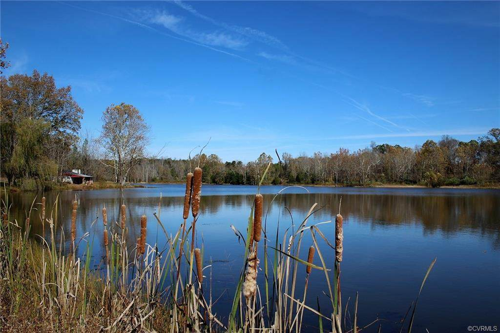 1294 Randolph Creek Road - Photo 1