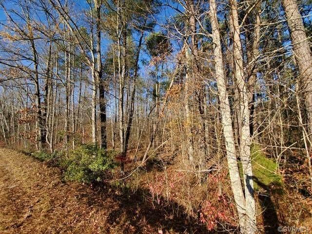 00 Hills Fork - Photo 1