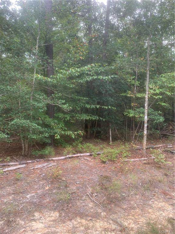 000 Two Rivers Trail, Lanexa, VA 23089 (MLS #2036826) :: EXIT First Realty