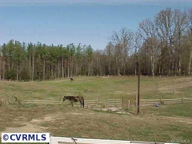16114/16122 Wilkinson Road, Dinwiddie, VA 23841 (MLS #2100446) :: Treehouse Realty VA