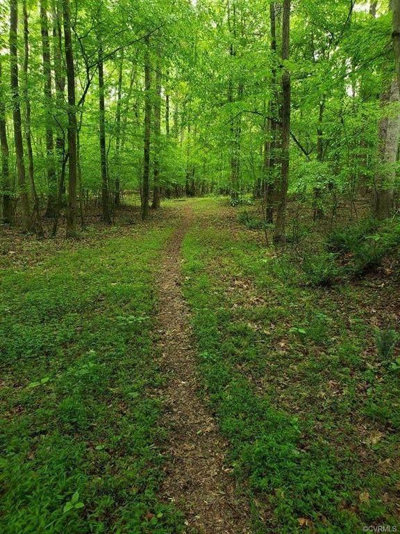 20133 Feather Drive, Rockville, VA 23146 (MLS #2101230) :: Treehouse Realty VA