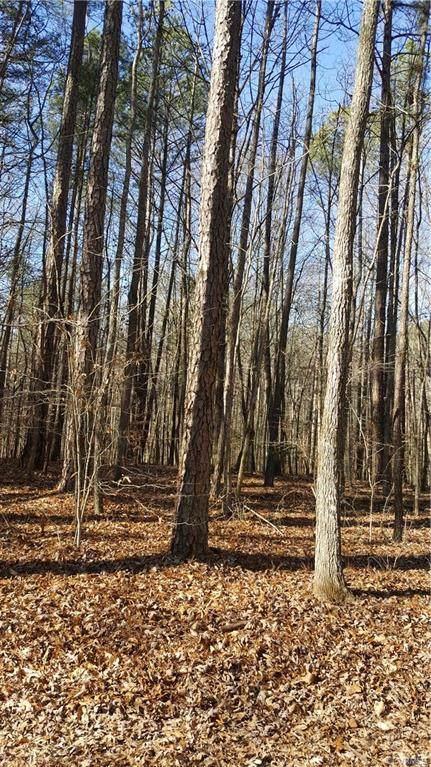 000 Whitewood Lane, Montpelier, VA 23192 (MLS #2101384) :: Treehouse Realty VA