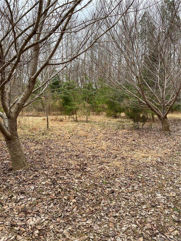 Lot 5 Groom, Saluda, VA 23149 (MLS #2105258) :: EXIT First Realty