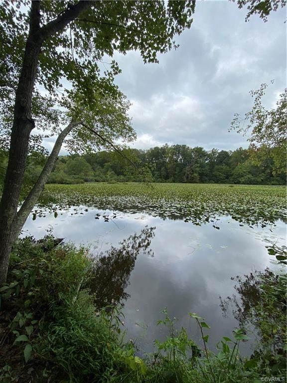 0000 Trices Lake Road, Columbia, VA 23038 (MLS #2114654) :: Treehouse Realty VA