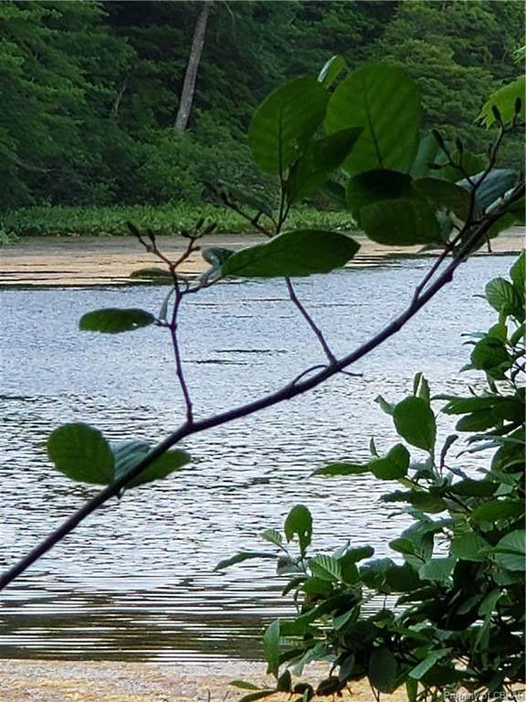 0000 Mill Pond Drive, North, VA 23128 (MLS #2115543) :: The RVA Group Realty