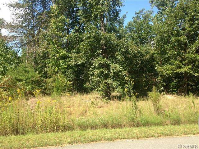 56.667 ACRES, Poorhouse Road, Rice, VA 23966 (MLS #2115857) :: Treehouse Realty VA