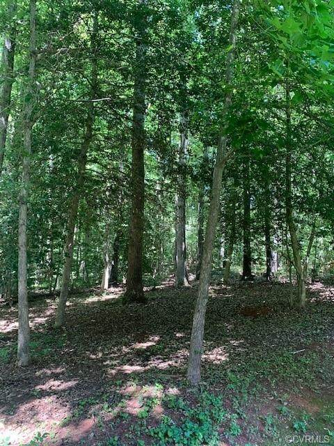 0 Two Rivers Trail, Lanexa, VA 23089 (MLS #2118501) :: EXIT First Realty