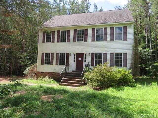 11915 Sapony Church Road, Mc Kenney, VA 23872 (MLS #2122727) :: The RVA Group Realty