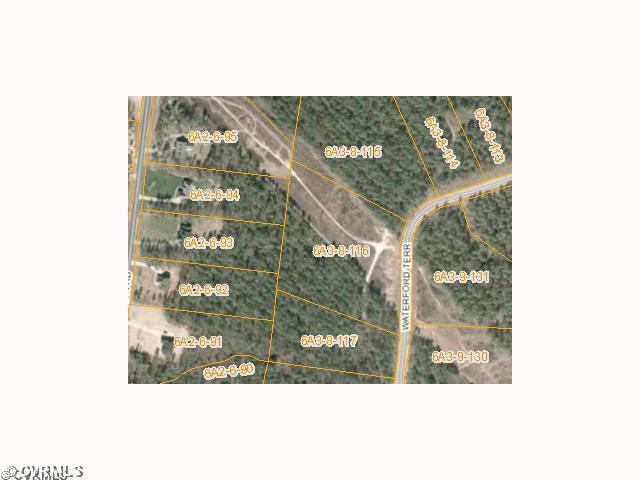 116 Waterford Terrace, Sutherland, VA 23885 (#1220879) :: Abbitt Realty Co.