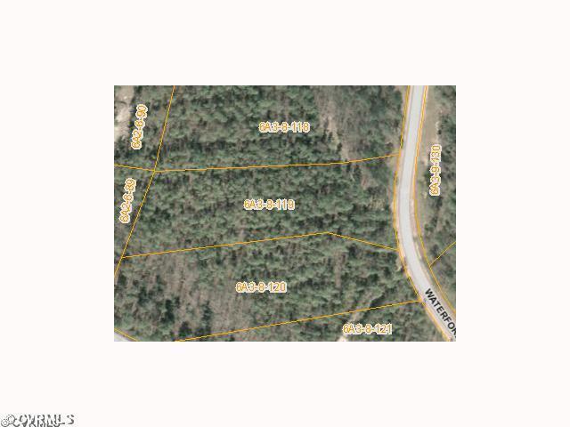 119 Waterford Terrace, Sutherland, VA 23885 (#1220888) :: Abbitt Realty Co.