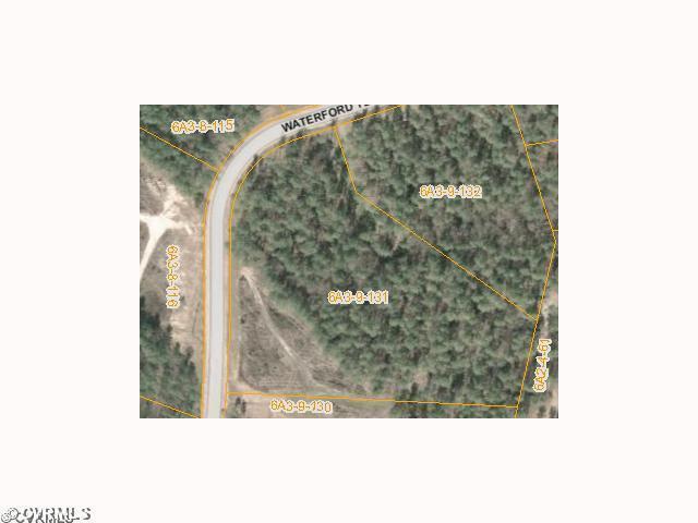 131 Waterford Terrace, Sutherland, VA 23885 (#1220901) :: Abbitt Realty Co.